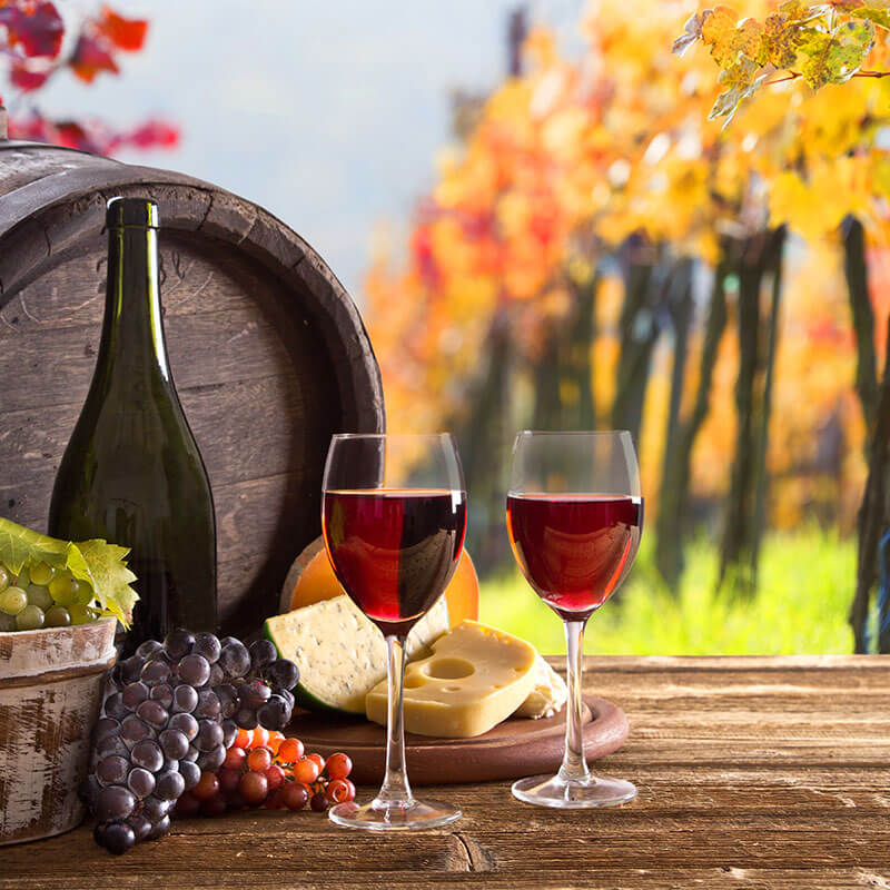 Niagara Wine Country Tranquil Afternoon Wine & Cheese Tour